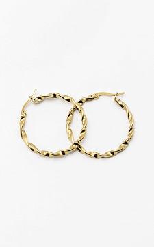 Earrings Evelien - Stainless steel earrings