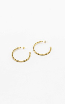 Earrings Heleen - Stainless steel earrings