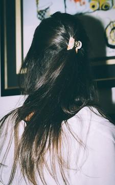 Pince à Cheveux Wilke -
