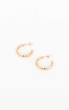 Earrings Nelan - Stainless steel earrings
